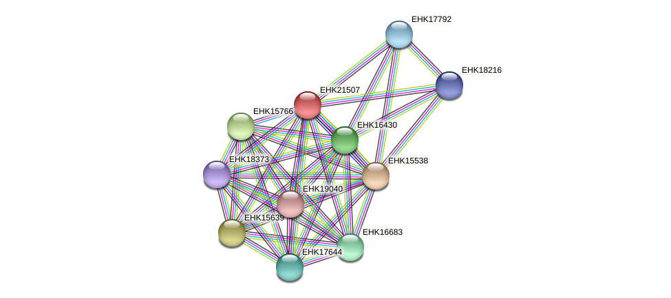 EHK21507 protein (Hypocrea virens) - STRING interaction network