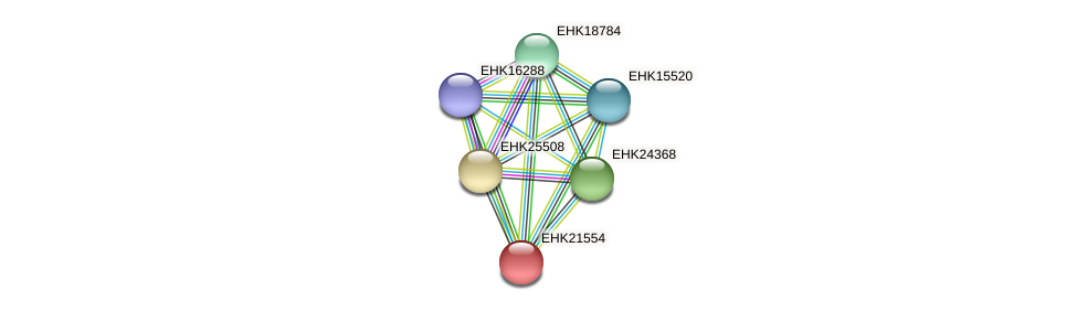 EHK21554 protein (Hypocrea virens) - STRING interaction network