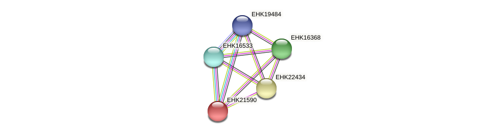 EHK21590 protein (Hypocrea virens) - STRING interaction network