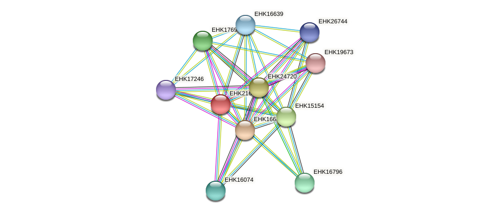 EHK21630 protein (Hypocrea virens) - STRING interaction network