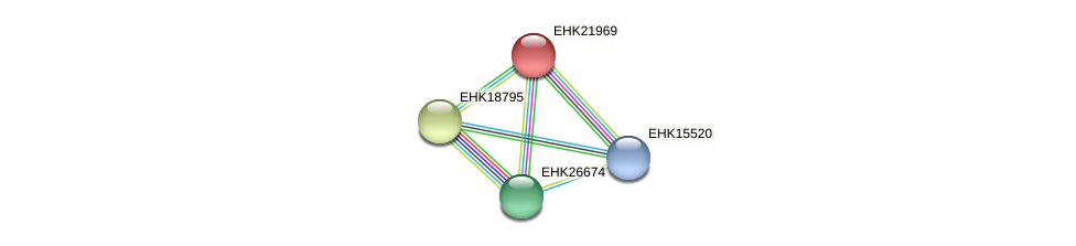 EHK21969 protein (Hypocrea virens) - STRING interaction network