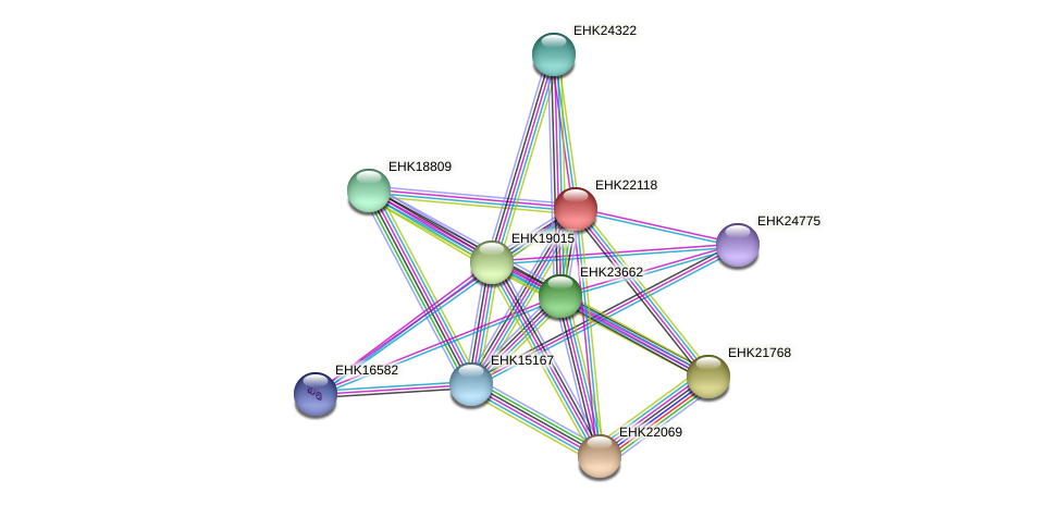 EHK22118 protein (Hypocrea virens) - STRING interaction network