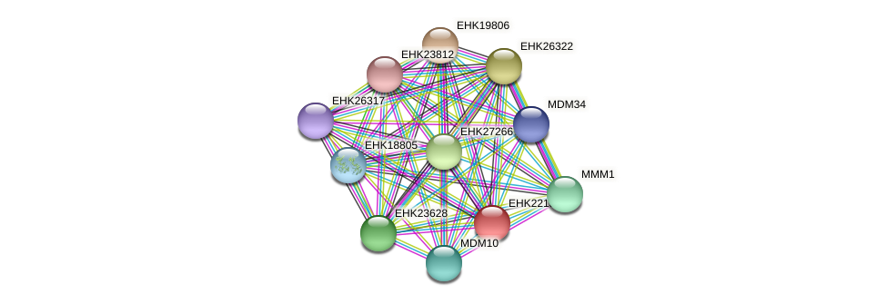 EHK22136 protein (Hypocrea virens) - STRING interaction network