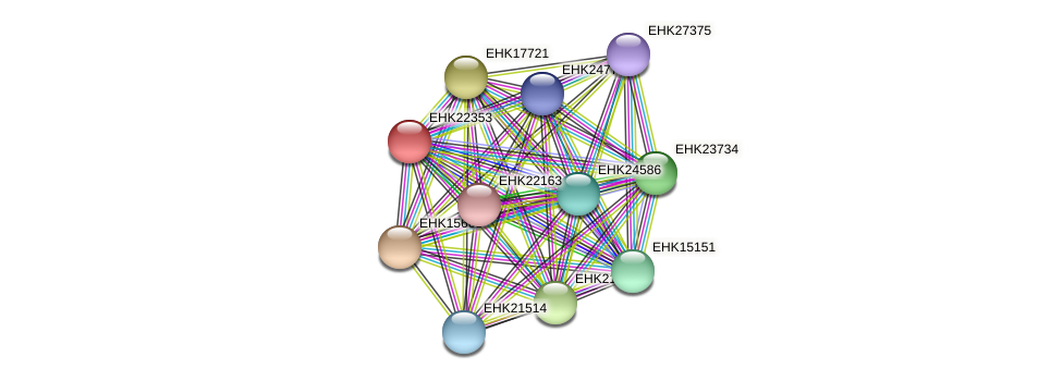 EHK22353 protein (Hypocrea virens) - STRING interaction network