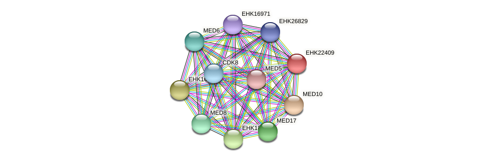 EHK22409 protein (Hypocrea virens) - STRING interaction network