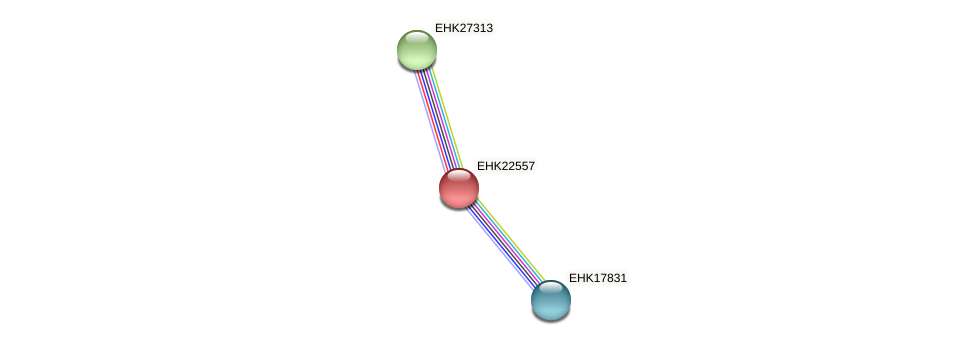 EHK22557 protein (Hypocrea virens) - STRING interaction network