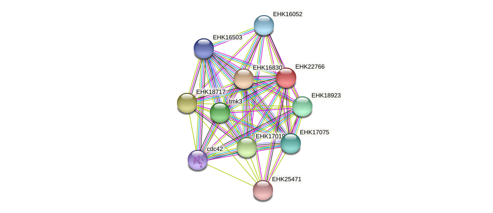 EHK22766 protein (Hypocrea virens) - STRING interaction network