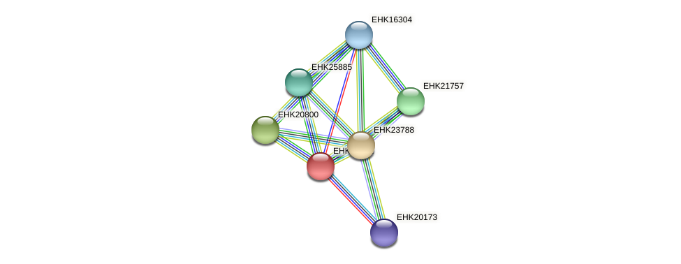 EHK23001 protein (Hypocrea virens) - STRING interaction network