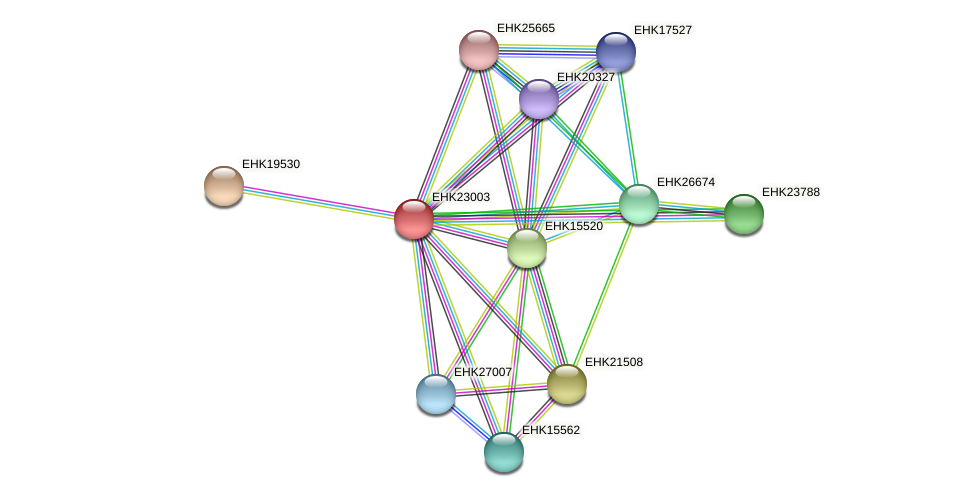 EHK23003 protein (Hypocrea virens) - STRING interaction network