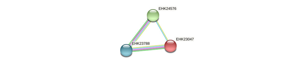 EHK23047 protein (Hypocrea virens) - STRING interaction network