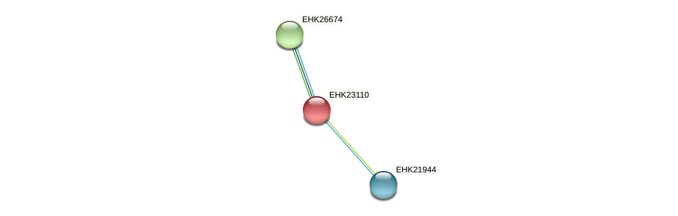 EHK23110 protein (Hypocrea virens) - STRING interaction network