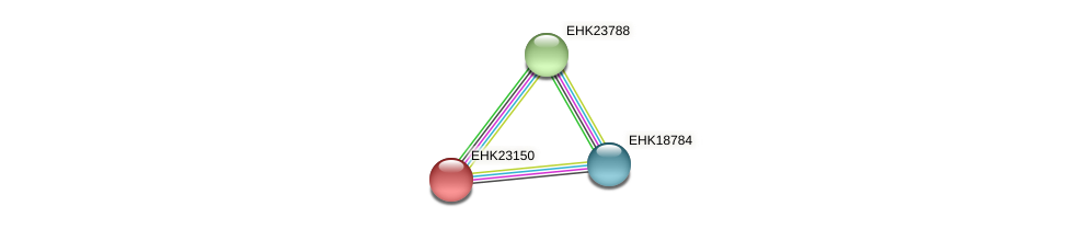 EHK23150 protein (Hypocrea virens) - STRING interaction network