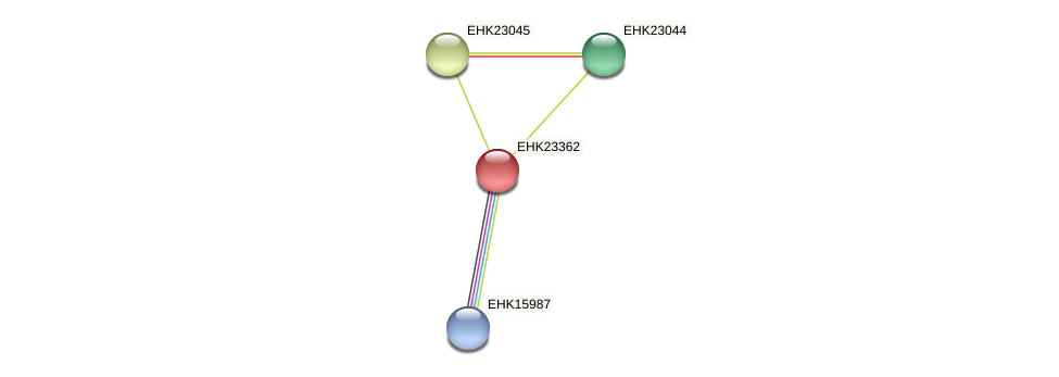 EHK23362 protein (Hypocrea virens) - STRING interaction network