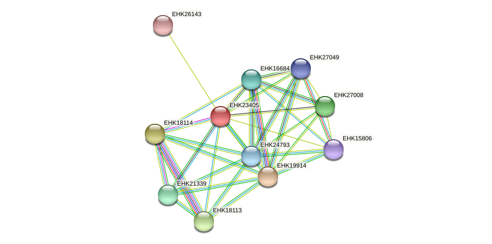 EHK23405 protein (Hypocrea virens) - STRING interaction network