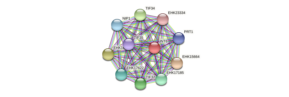 INT6 protein (Hypocrea virens) - STRING interaction network