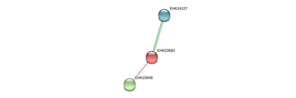 EHK23583 protein (Hypocrea virens) - STRING interaction network