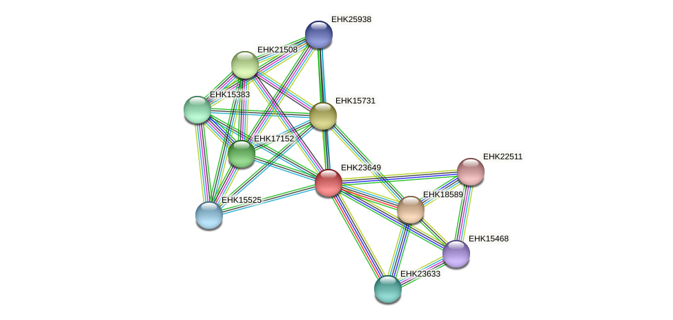 EHK23649 protein (Hypocrea virens) - STRING interaction network