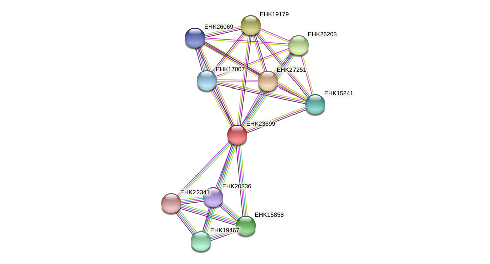 EHK23699 protein (Hypocrea virens) - STRING interaction network
