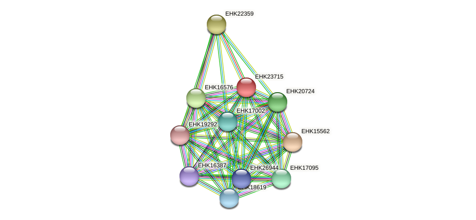 EHK23715 protein (Hypocrea virens) - STRING interaction network