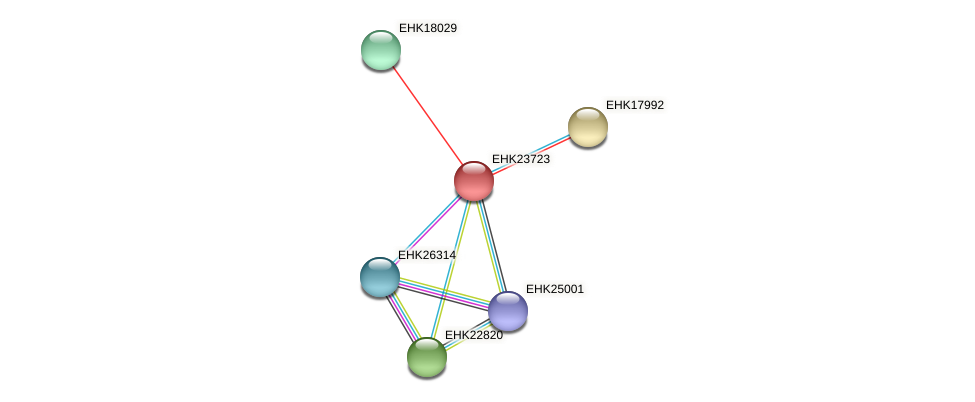 EHK23723 protein (Hypocrea virens) - STRING interaction network