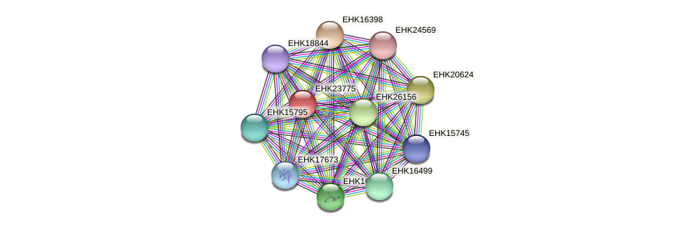 EHK23775 protein (Hypocrea virens) - STRING interaction network