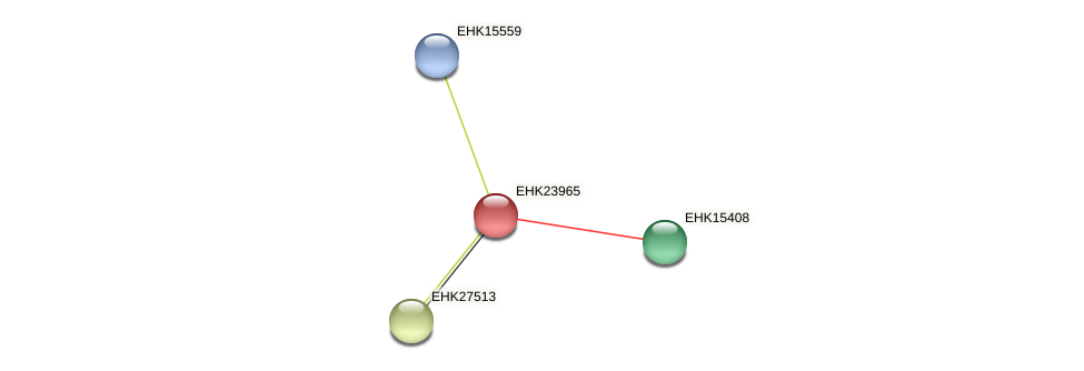 EHK23965 protein (Hypocrea virens) - STRING interaction network