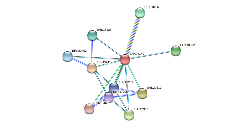EHK24149 protein (Hypocrea virens) - STRING interaction network