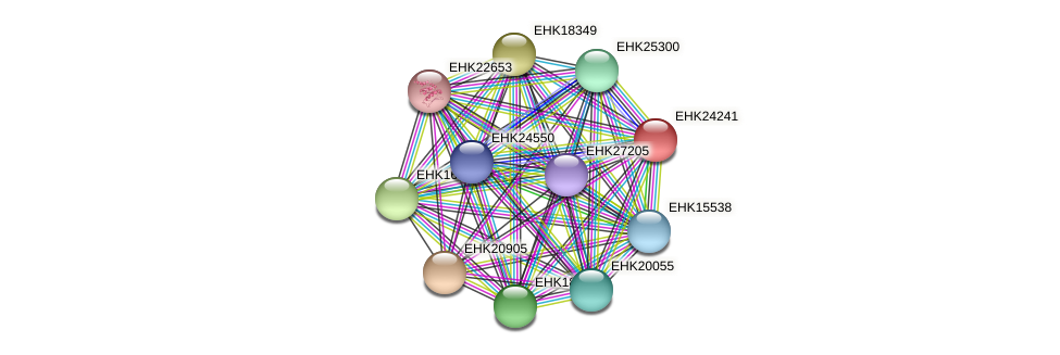 EHK24241 protein (Hypocrea virens) - STRING interaction network