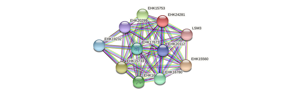 EHK24281 protein (Hypocrea virens) - STRING interaction network