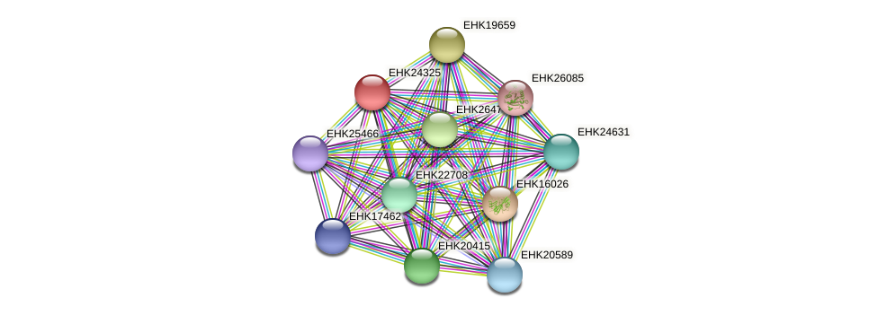 EHK24325 protein (Hypocrea virens) - STRING interaction network