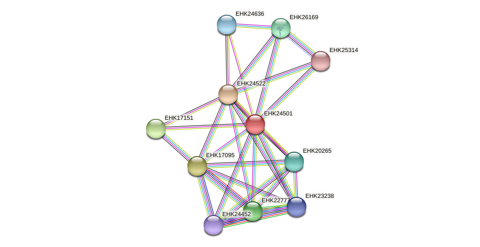 EHK24501 protein (Hypocrea virens) - STRING interaction network