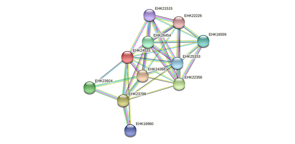 EHK24533 protein (Hypocrea virens) - STRING interaction network