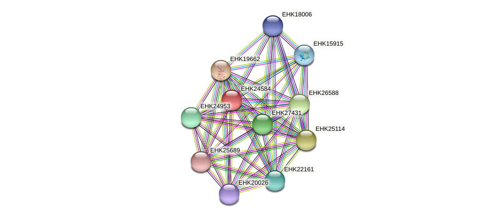 EHK24584 protein (Hypocrea virens) - STRING interaction network