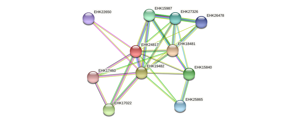EHK24817 protein (Hypocrea virens) - STRING interaction network