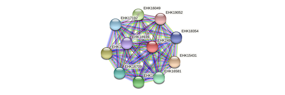 EHK24864 protein (Hypocrea virens) - STRING interaction network