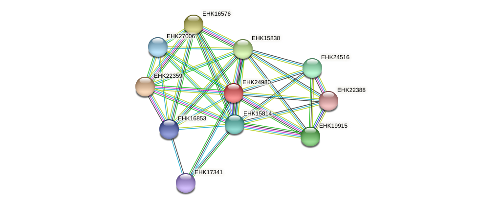 EHK24980 protein (Hypocrea virens) - STRING interaction network