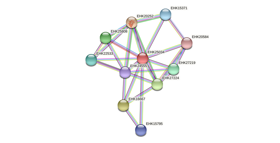 EHK25034 protein (Hypocrea virens) - STRING interaction network