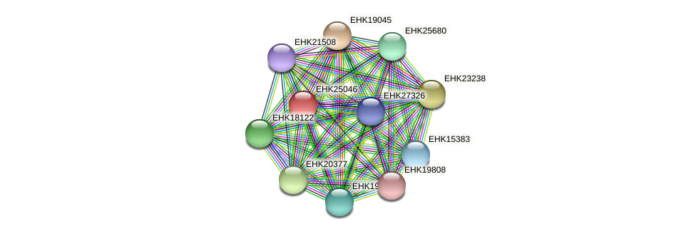 EHK25046 protein (Hypocrea virens) - STRING interaction network