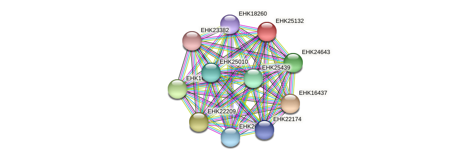 EHK25132 protein (Hypocrea virens) - STRING interaction network