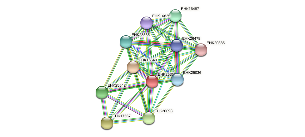 EHK25359 protein (Hypocrea virens) - STRING interaction network