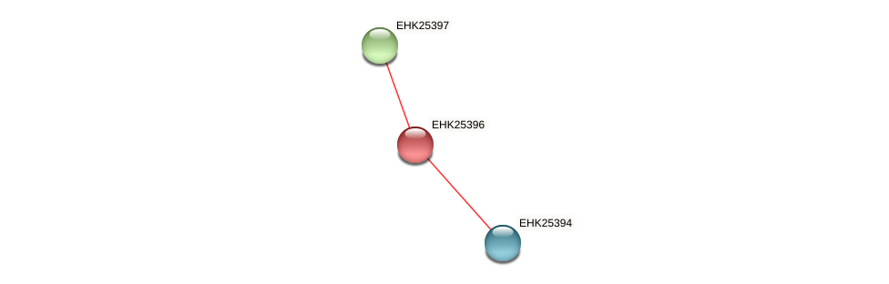 EHK25396 protein (Hypocrea virens) - STRING interaction network