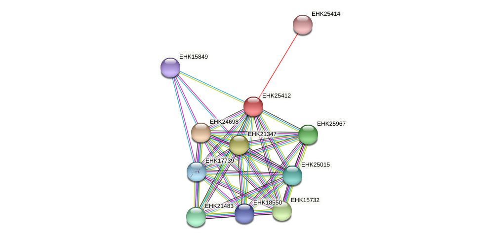 EHK25412 protein (Hypocrea virens) - STRING interaction network