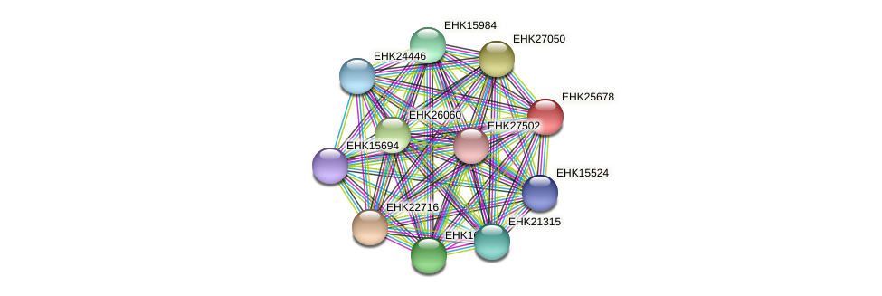EHK25678 protein (Hypocrea virens) - STRING interaction network