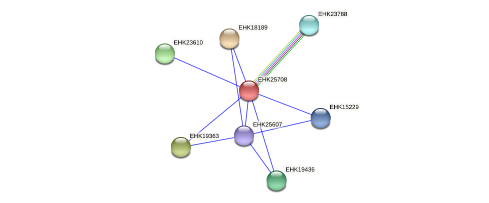 EHK25708 protein (Hypocrea virens) - STRING interaction network