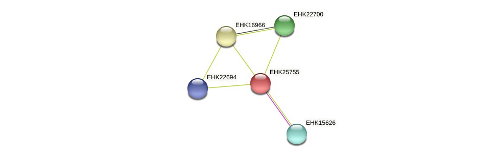 EHK25755 protein (Hypocrea virens) - STRING interaction network