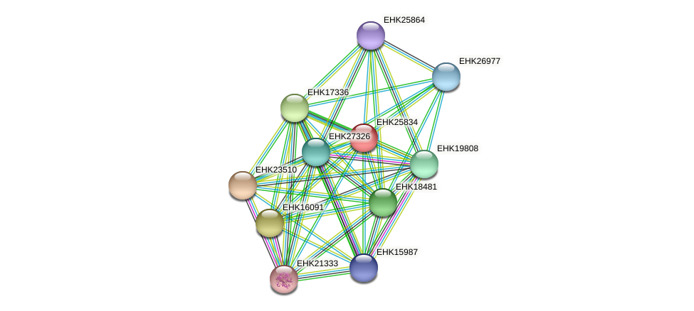 EHK25834 protein (Hypocrea virens) - STRING interaction network