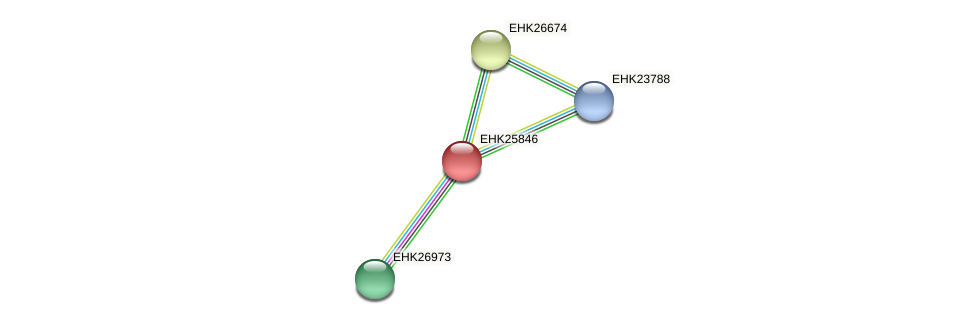 EHK25846 protein (Hypocrea virens) - STRING interaction network