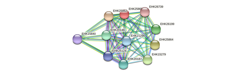 EHK25865 protein (Hypocrea virens) - STRING interaction network