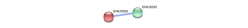 EHK25926 protein (Hypocrea virens) - STRING interaction network
