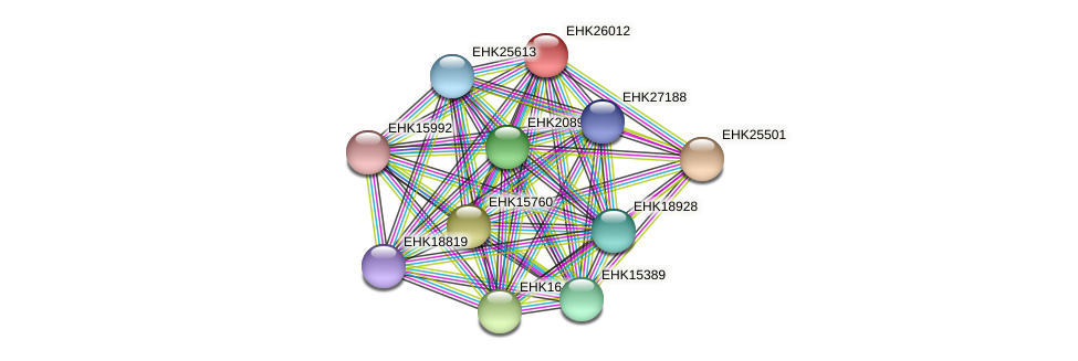 EHK26012 protein (Hypocrea virens) - STRING interaction network